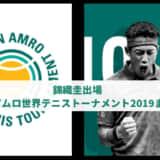 【錦織圭SF】ABNアムロ世界テニストーナメント2019(ロッテルダム)動画ハイライト・ドロー・試合速報まとめ | ATP500