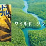 垣根 涼介のハードボイルド小説『ワイルド・ソウル』を読んだ感想|日本政府への痛快な復讐劇が最高の傑作