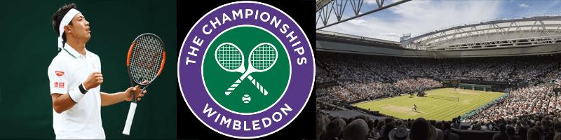 ウィンブルドン選手権2019(The Championships, Wimbledon) / 錦織圭